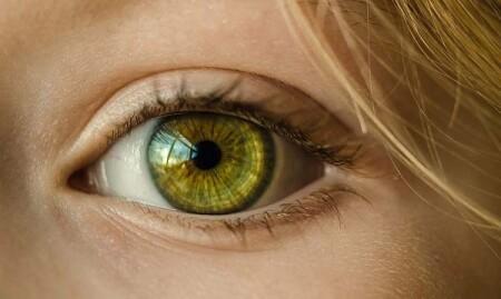 Żółtaki kępki żółte